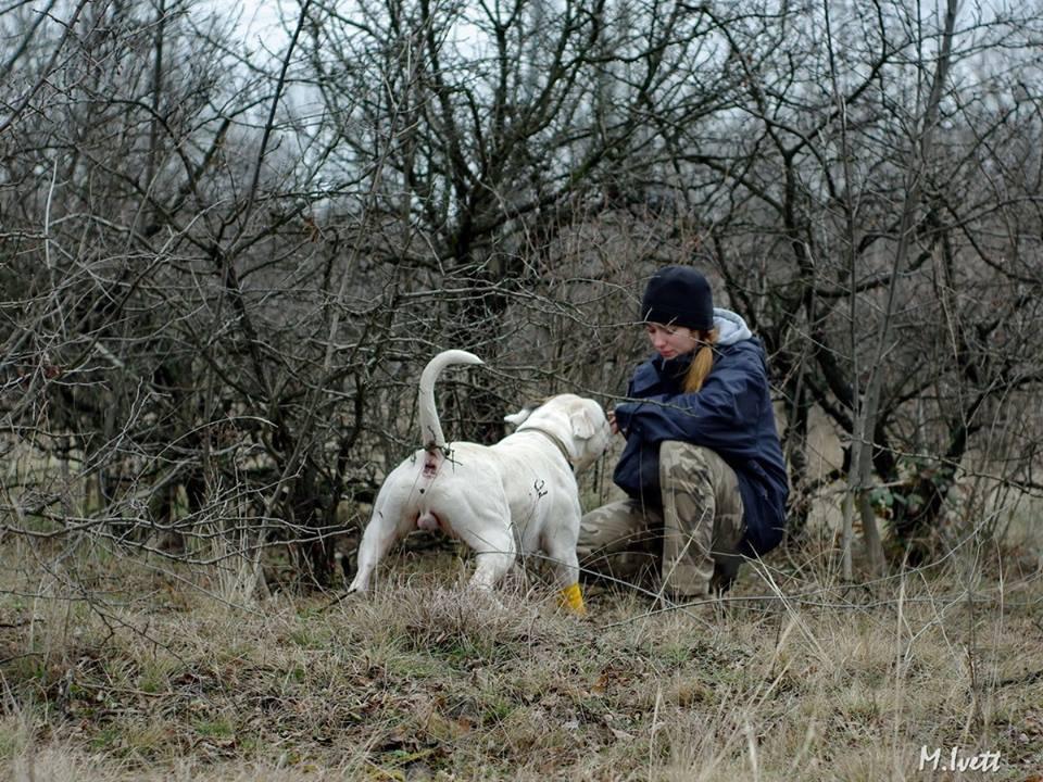 2014_02_22_terulet_trening_szobor_park_01