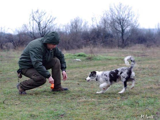 2014_02_22_terulet_trening_szobor_park_05
