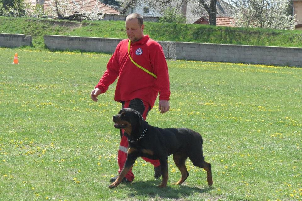 2015_04_18-19_II_JuliusK9_Mentokutyas_Kupa_palya_11