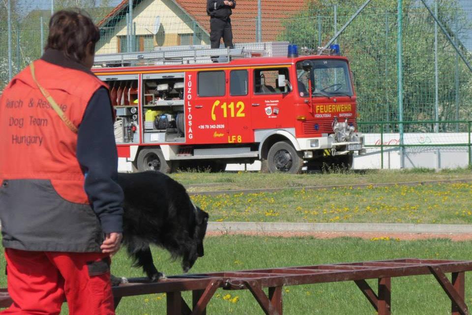 2015_04_18-19_II_JuliusK9_Mentokutyas_Kupa_palya_16