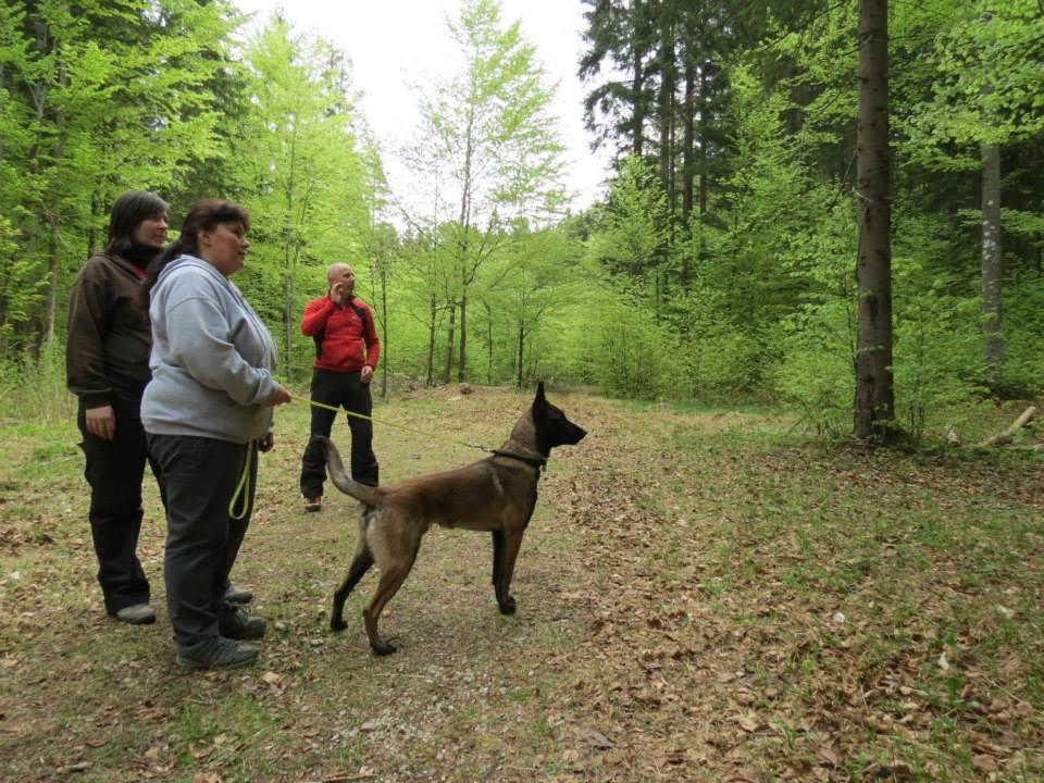 2015_04_29_terulet_trening_szlovenia_08