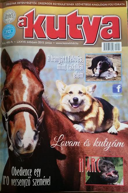 2015_06_10_a_kutya_magazin_01