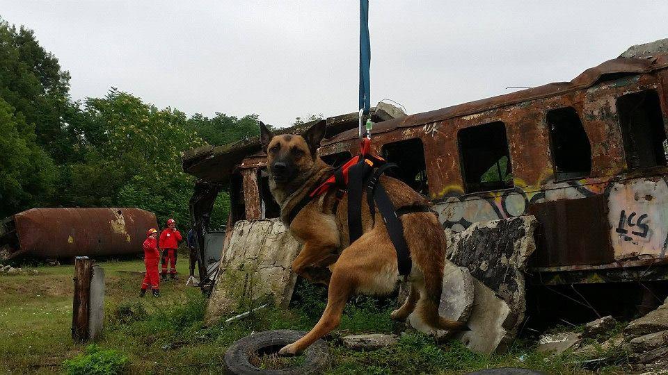 2015_08_21-23_Trening_Hajduszoboszlo_08