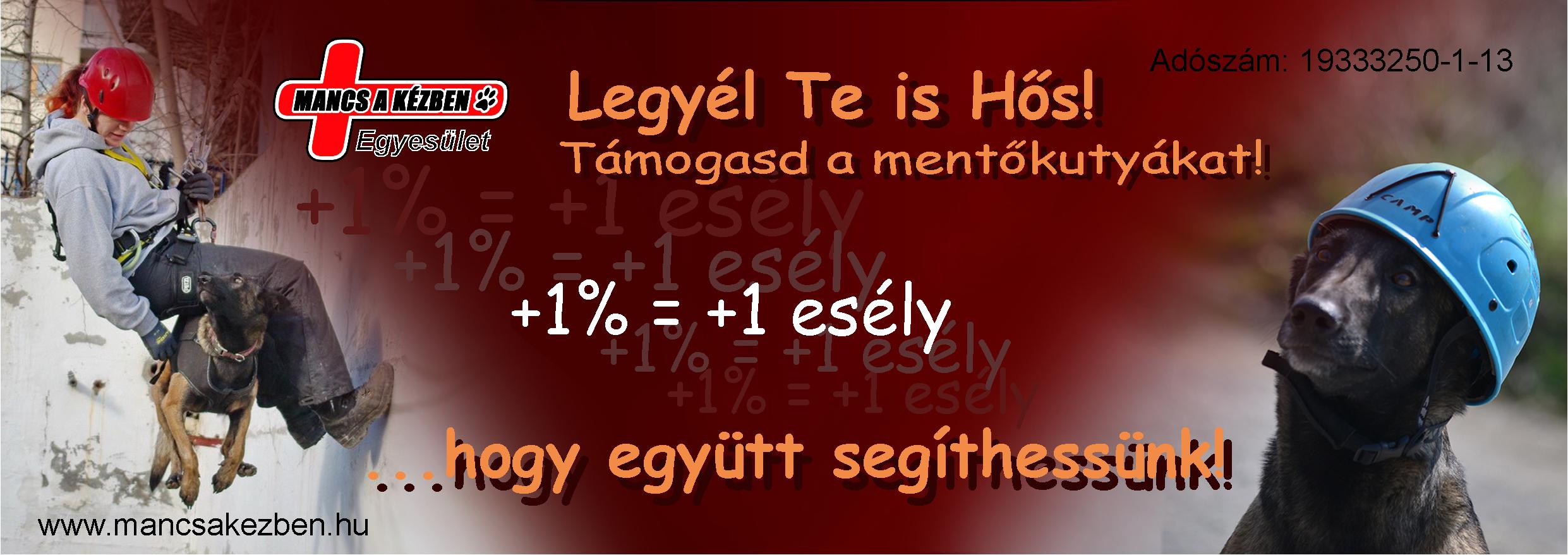 1_szazalek_2016