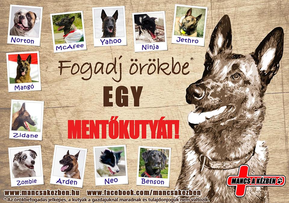 fogadj_orokbe_mentokutyat_01